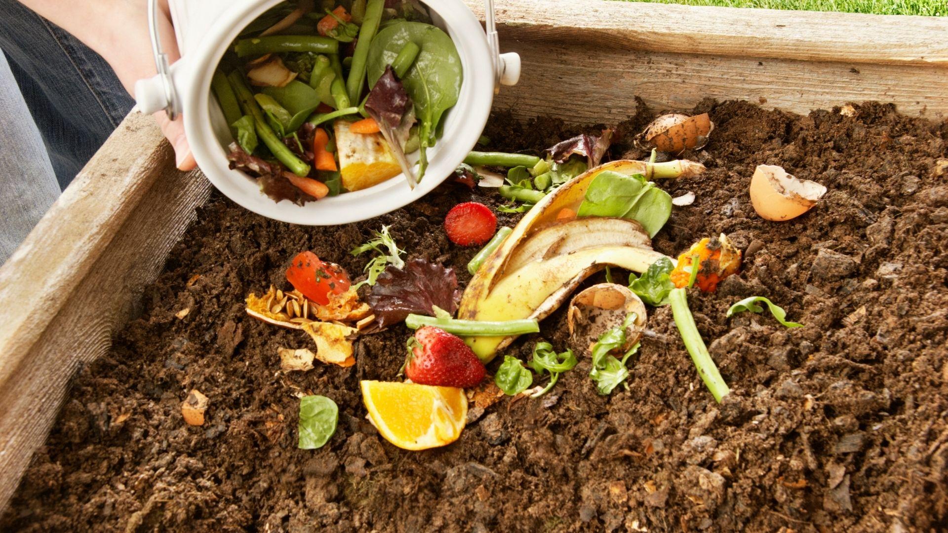 Du compostage résidentiel.